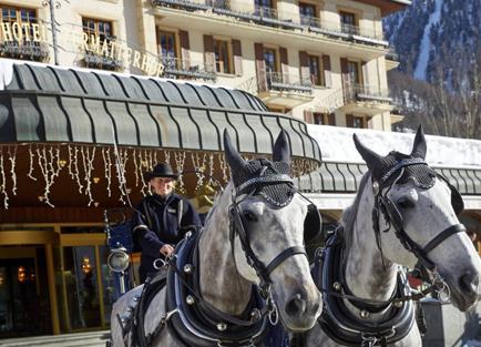 Zermatterhopf-horses